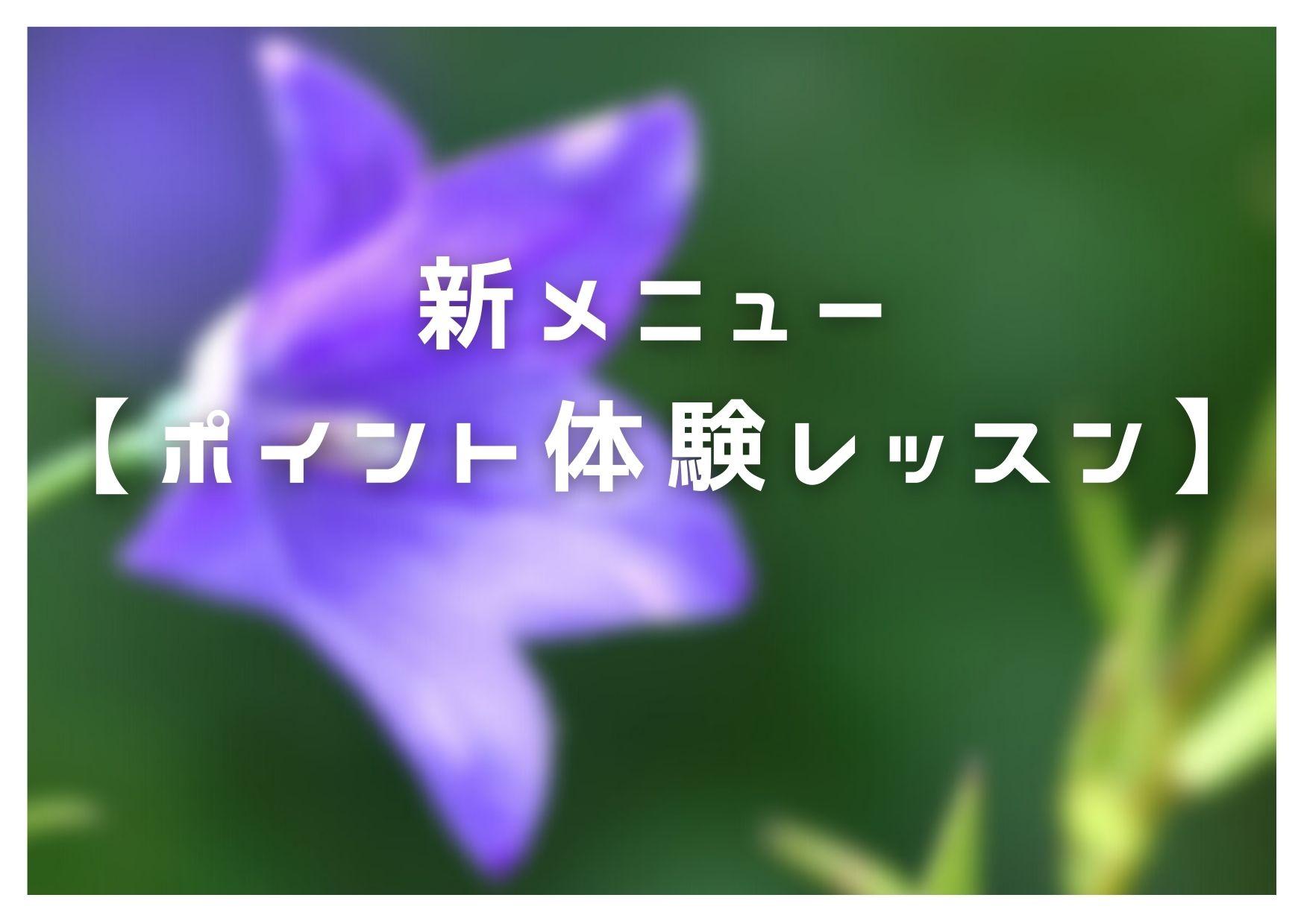 新メニュー【ポイント体験レッスン】